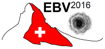 EBV2016_.png